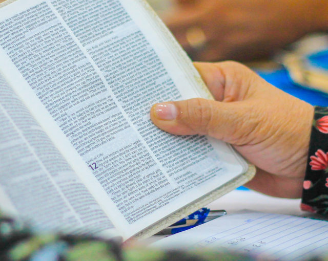 Fake News and the Bible